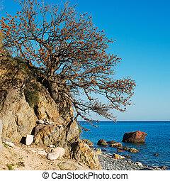 Crimean tree over sea landscape