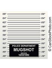 criminal, escala, tiro, photo., assalte, ilustração, linha., adicionar, vetorial, mugshot, em branco, lineup polícias, centímetro, fotografia.
