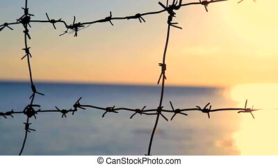 Criminal sunset - Silhouette of hands on the barbed wire at...