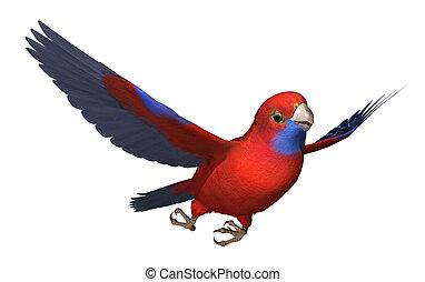 3D render of a Crimson Rosella parrot in flight.