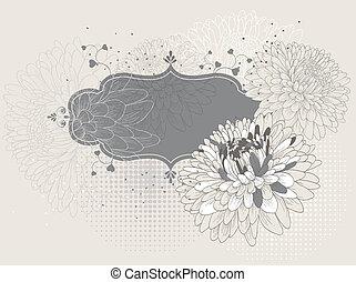 crisantemi, cornice, azzurramento