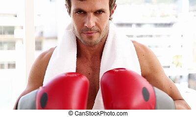 crise, homme, porter, gants boxe, looki
