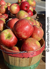 Crisp ripe apples for sale