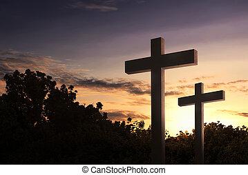 cristiano, cruz, en, el, campo con árboles