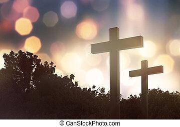 cristiano, cruz, en, el, campo