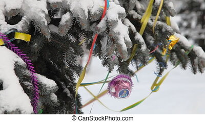 Cristmas pine tree under snow