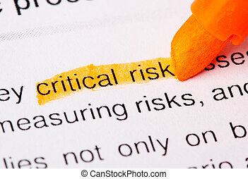critical risk word