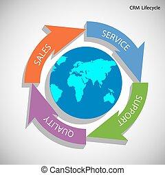 crm, ciclo vital