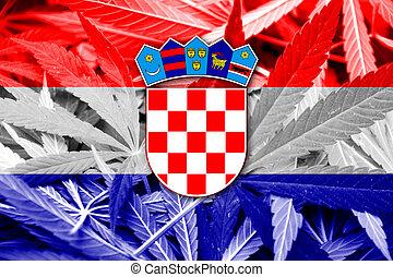 Croatia Flag on cannabis background. Drug policy. ...