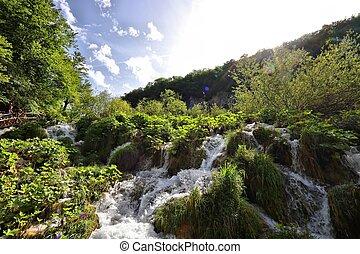 Croatia nature - Plitvice