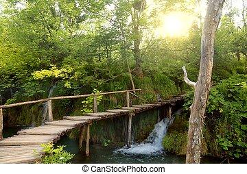Croatia nature trail
