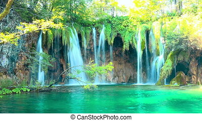 croatie, lacs, chute eau, parc, forêt nationale, plitvice