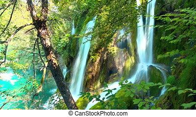 croatie, national, plitvice, lacs, parc, forêt, chute eau