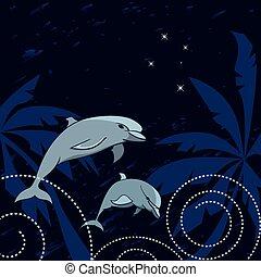 croce del sud, delfini
