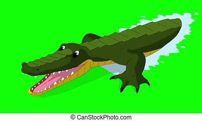 Crocodile Attacks Front View Chroma - Crocodile Attacks...