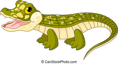 crocodile, bébé