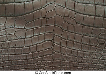 """This image of Freshwater Crocodile """"Crocodylus siamensis"""".This skin is very classic and beauty."""