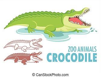 Crocodile cartoon illustration