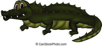 Crocodile - colourfull