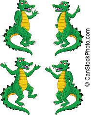 crocodile, ensemble
