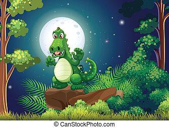 crocodile, fâché, forêt, au-dessus, rocher