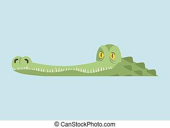Crocodile in water. Alligator in river. Water reptile...