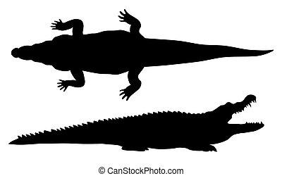 Crocodille - Abstract vector illustration of crocodile...