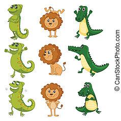 crocodilo, leão, camaleão