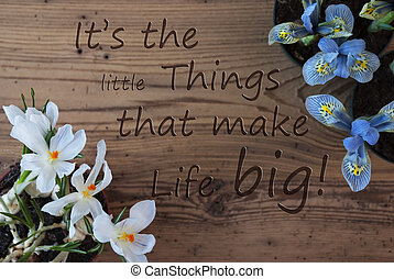 Crocus And Hyacinth, Quote Little Things That Make Life Big