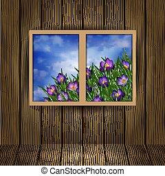 Crocus flowers outside the window