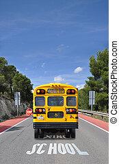 croisement, autobus, école, panneau de signalisation
