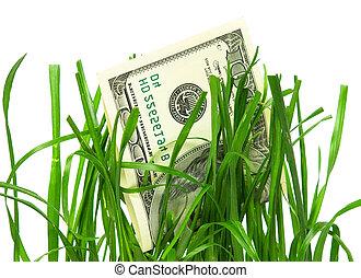 croissance financière