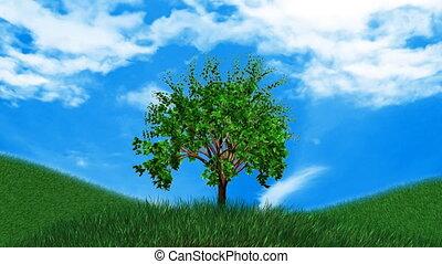 croissant, arbre., paysage