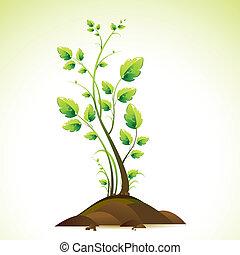 croissant, arbre