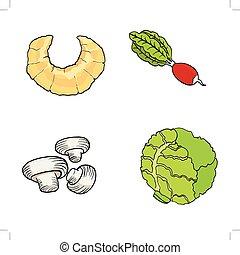 croissant,radish,champignons,cabbagehand drawn, vector illustrat