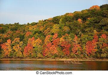 croix, rue., couleurs, automne, long, rivière