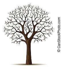 cron, ramas, silueta, árbol