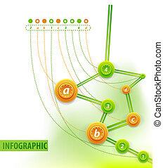 cronología, infographics., plano de fondo