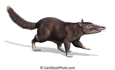 cronopio, -, förhistorisk, däggdjur