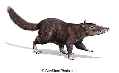 cronopio, -, prehistoryczny, ssak