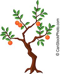 crooked orange tree