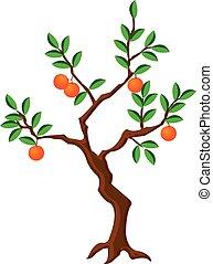 crooked orange tree