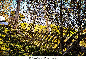 crooked wooden fence in autumn sunlight