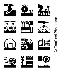 Crop growing and harvesting of agricultural products - vector illustration