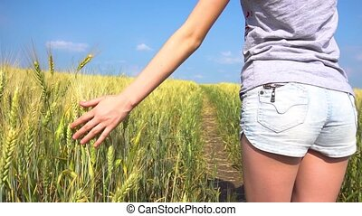 Crop female touching cereal grass - Unrecognizable young...