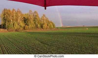 crop field with autumn rainbow