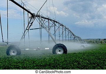 Crop irrigation.