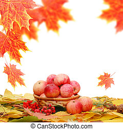 Crop of apples against autumn leaves