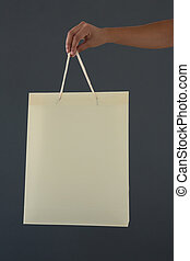Cropped hand of female customer holding shopping bag