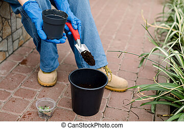 Cropped photo of female gardener in gloves transplanting succulents from small pot in soil working with shovel in garden greenhouse. Growing of succulents and tropic plants, gardening concept.